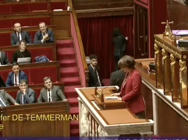 Jennifer De Temmerman s'exprime sur les motions de censure relatives au 43-3.